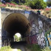 Bayshore Tunnel