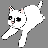 Animated Cat